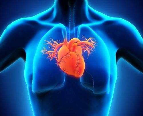 高血压分类