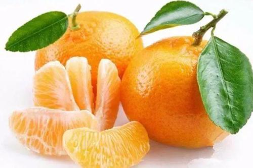 橘子降血压