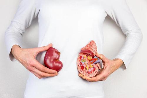 如何防治高血压肾损害