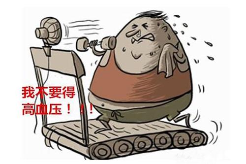 高血压运动减肥