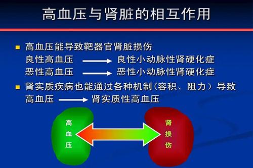 高血压引起肾脏靶器官疾病