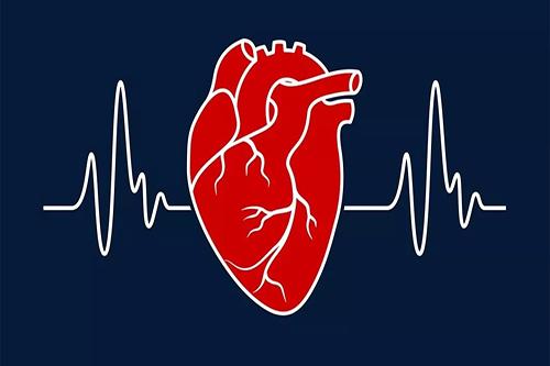 高血压分类及症状表现有哪些