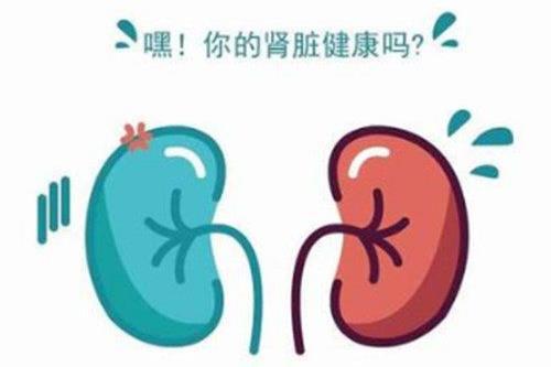 高血压引起肾衰竭