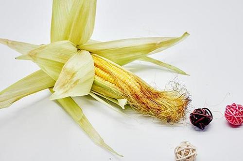 玉米须降血压