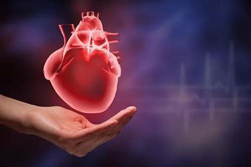 高血压危害心脏健康